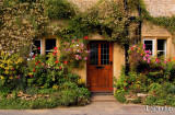 Flower-Covered Home