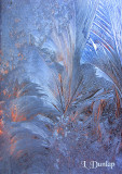 Morning Frost On The Window 2