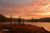 55 -  Interfalls Lake, Early Winter: Fire In The Sky