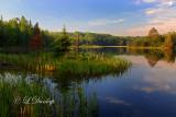 54 - Interfalls Lake, Morning Light