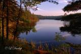 53 -  Interfalls Lake, Summer Evening Light