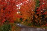 84 - Sawtooth Mountains: Beaver Dam Trail, Peak Of Fall Color