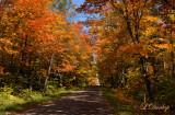Fall Color Road, Grand Marais Area