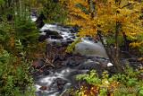 84.4 - Tait River: Autumn 2