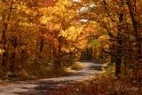 86.1 - Sawtooth Mountains: Golden Drive Along Beaver Dam Trail