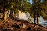 Gooseberry Falls Cedars, Wide View