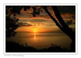 Dawns dawn