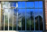Through the glass.jpg