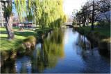 Avon River Christchurch 3.