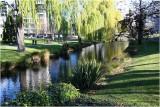 Avon River Christchurch 4.