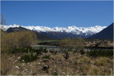 On the way to Arthurs Pass 7.
