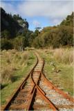 Nile River Rainforest West coat train track.jpg