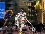 Thiruvallikeni Vijaya Varuda Brahmothsavam - Day 8 Evening Gudhirai Vahanam