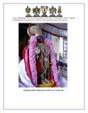 Thirumanjana vedigai kainkaryam_Page_3.jpg