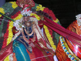 The smiling countenace of dheivanAyakap perumAL on the kudhirai vAhanam.JPG