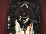 Lotus eyes of Sri Venugopala