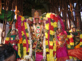 SRI SARANATHAPERUMAL IN THER