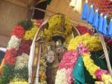 dEhaleesar (Aayanar) on Thanga Pallaku