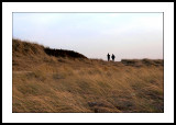 On the dunes