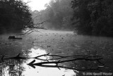 The Arrowhead - 2006 UMD Photo Contest Winner - Black & White