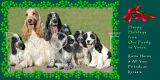 Family portrait card