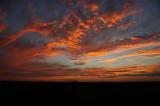 Sunset Alto Cumulus