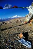 Shishi Pangma Pass Skull, Tibet