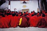 Sera Monks sit, Tibet