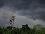 Ominous sky, 16 June 2007.