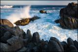 Monterey Moments