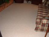carpet in family room.JPG