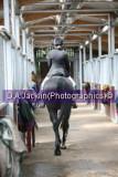 Pony Club Camp 2007                                                                                             ***STOP PRESS***