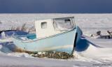 Sur la vague d'hiver / Chasing the winter waves