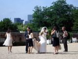 A wedding party is