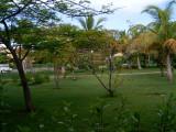 The resort from my bedroom window