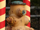Like a barbershop hydrant