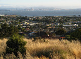 Wider view of bay and city from hill