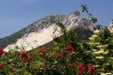 Massa-Carrara - 3:38pm