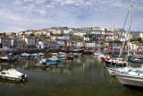 Brixham harbour and houses