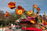 Rose Parade 2007,Pasadena/Lead the Way