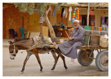 LPG Transport in a desert oasis
