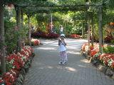 Day 3, Butchart Gardens, Victoria