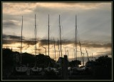 Sunset at Westhaven Marina