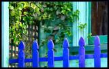 Blue Fence.jpg