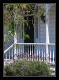 Ponsonby Villa 3.jpg
