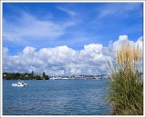 Auckland City from Bayswater.jpg