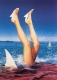Shark Attack, 1997