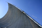 White sails in the blue sky