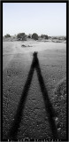 tall_shadow.jpg