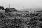 lakehouse in the rain 2